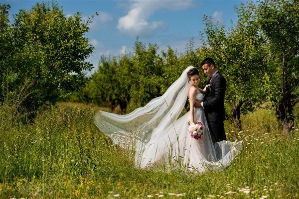 Anca & Mihai – Wedding Clip